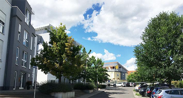 Dupre Speyer